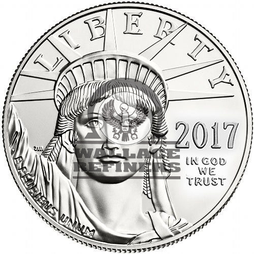 1 oz American Platinum Eagle Coin (Random Year