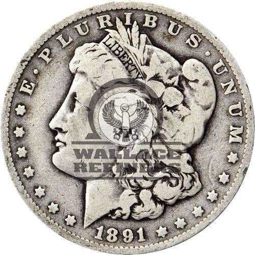 Morgan Silver Dollar Coin (1878-1904