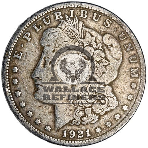 Morgan Silver Dollar Coin (1921